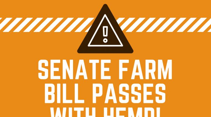 Senate Farm Bill Passes WITH Hemp Farming Act!