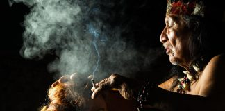 The Scientific Reason People In Crisis Benefit from Ayahuasca